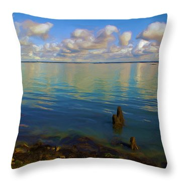 Throw Pillow featuring the digital art Solent by Ron Harpham