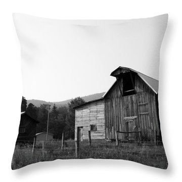 Throw Pillow featuring the photograph Solice II by Meaghan Troup