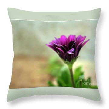 Throw Pillow featuring the photograph Solitaire by Chris Anderson