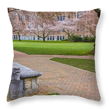 Throw Pillow featuring the photograph Solitary Bench by Sonya Lang