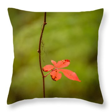 Solitary Red Leaf Throw Pillow