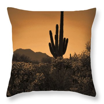 Solitary Saguaro Throw Pillow