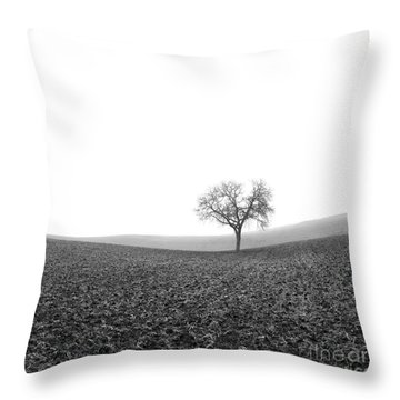 Solitary Tree In Winter. Auvergne. France Throw Pillow by Bernard Jaubert