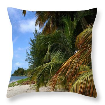 Throw Pillow featuring the photograph Nude Beach by The Art of Alice Terrill