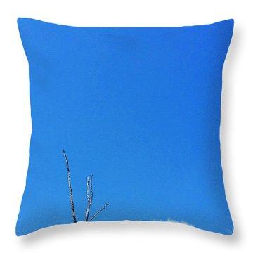 Solitude - Blue Sky Art By Sharon Cummings Throw Pillow