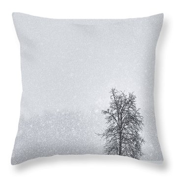 Solitude II Throw Pillow