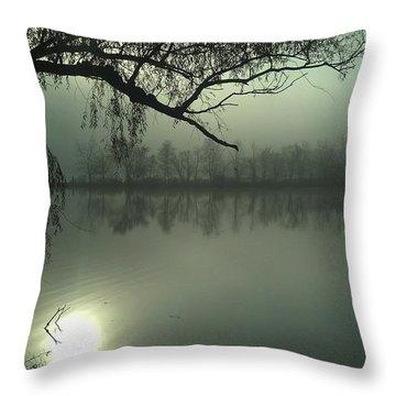 Solitude Throw Pillow by Joe Faherty