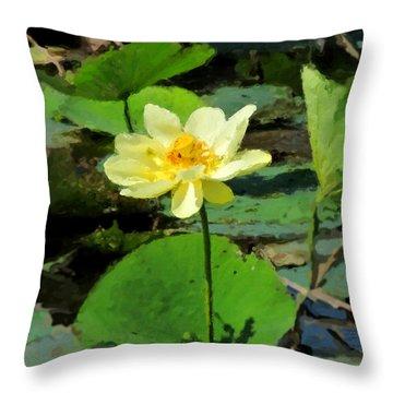 Throw Pillow featuring the photograph Solitude by John Freidenberg
