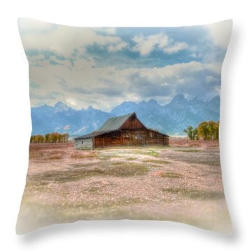 Solitude Throw Pillow by Kathleen Struckle