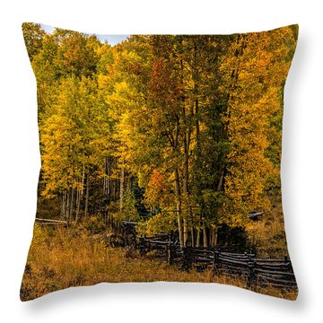 Throw Pillow featuring the photograph Solitude by Ken Smith