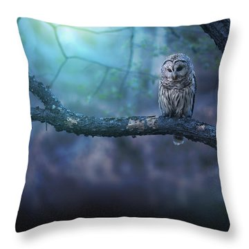 Solitude - Landscape Throw Pillow