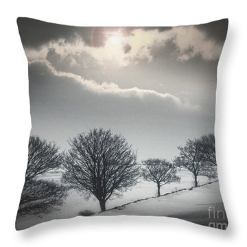 Solitude Of Coldness Throw Pillow