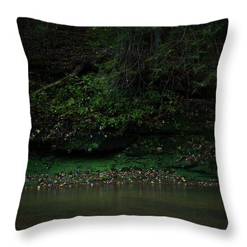 Solitude Throw Pillow by Shane Holsclaw