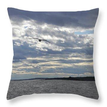 Solo Flight Throw Pillow by Jean Goodwin Brooks