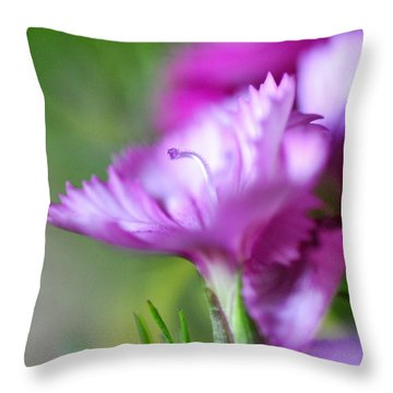 Solo II Throw Pillow by Christine Ricker Brandt