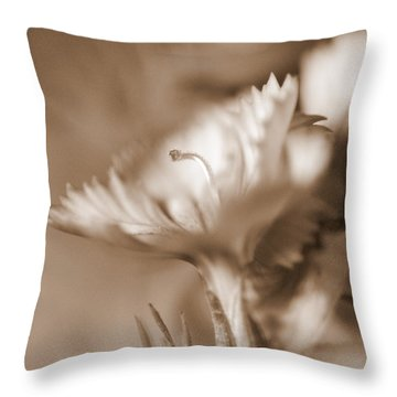 Throw Pillow featuring the photograph Solo IIi by Christine Ricker Brandt