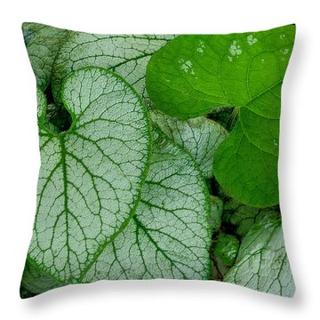 Solo Throw Pillow by Jacqui Boonstra