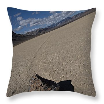 Throw Pillow featuring the photograph Solo Slider by Joe Schofield
