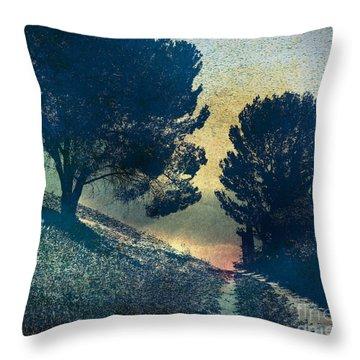 Somber Passage Throw Pillow by Bedros Awak