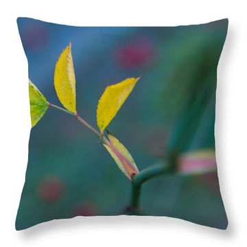 Some Color Throw Pillow by Andreas Levi