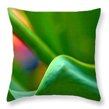 Some Like It Hot Throw Pillow by Theresa Tahara