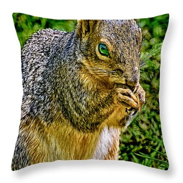 Some Squirrels Are Big Throw Pillow