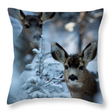 Throw Pillow featuring the photograph Somebody To Watch Over Me by Jim Garrison
