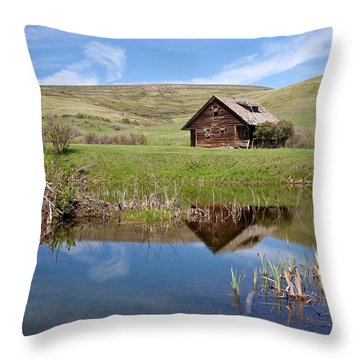 Throw Pillow featuring the photograph Somebody's Dream by Jack Bell
