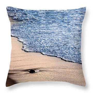 Something Lost Throw Pillow by Edgar Laureano