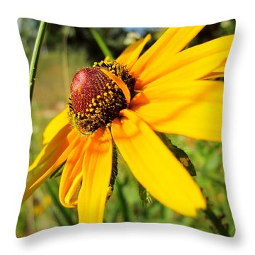 Something Out Of Place Throw Pillow