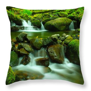 Sometimes Its Best To Sit And Dream Throw Pillow by Jeff Swan