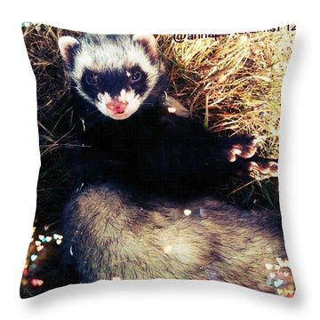 Sometimes We Like To Roll In The Straw #ferrets #pets Throw Pillow