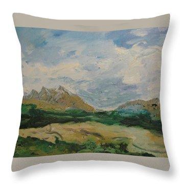Somewhere In Denali Throw Pillow