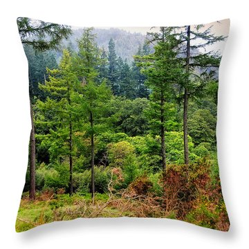 Somewhere In The Forest Over Upper Lake. Glendalough. Ireland Throw Pillow by Jenny Rainbow