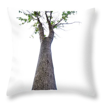 Throw Pillow featuring the photograph Somewhere Up There by Randi Grace Nilsberg