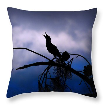 Throw Pillow featuring the photograph Song For Dawn by Lin Haring