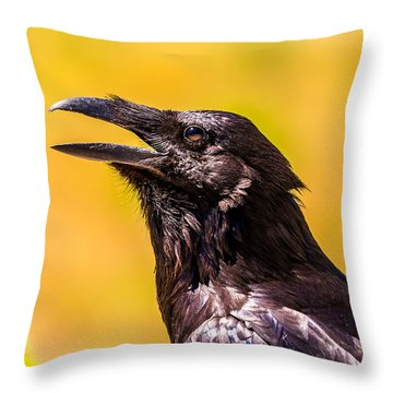 Song Of The Raven Throw Pillow