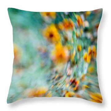 Throw Pillow featuring the photograph Sonic by Darryl Dalton