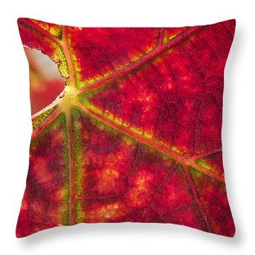 Sonoma Fall Leaf Throw Pillow