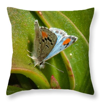 Throw Pillow featuring the photograph Sonoran Blue by Jim Thompson