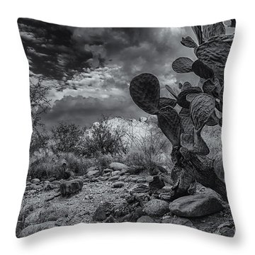 Throw Pillow featuring the photograph Sonoran Desert 15 by Mark Myhaver