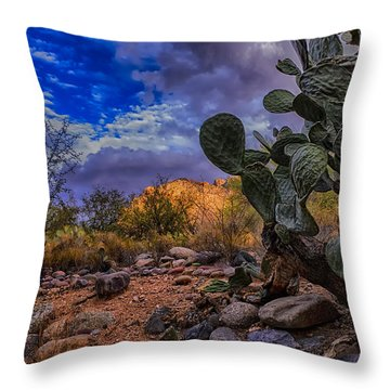Sonoran Desert 54 Throw Pillow by Mark Myhaver