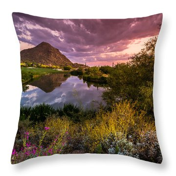 Desert Sunset Throw Pillows
