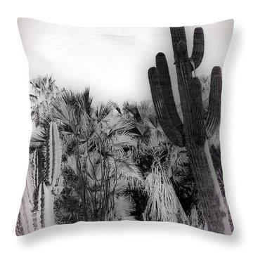 Throw Pillow featuring the photograph Sonoran Desert Vintage I by Carolina Liechtenstein