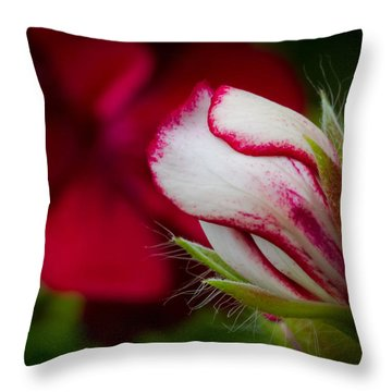 Sooon.... Throw Pillow by Andreas Levi