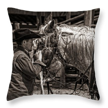 Throw Pillow featuring the photograph Soothing Touch by Joan Davis
