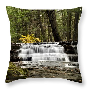 Soothing Waters Throw Pillow by Christina Rollo