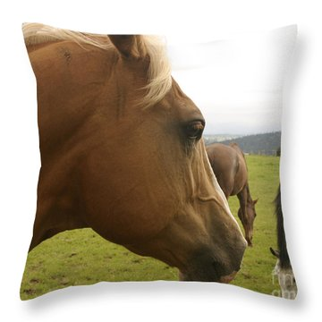Sorrel Horse Profile Throw Pillow by Belinda Greb