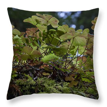 Sorrel Throw Pillow