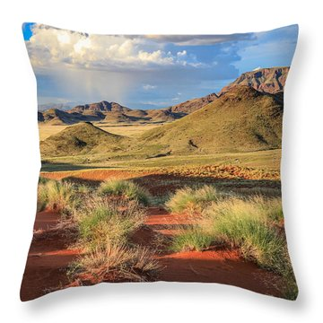 Sossulvei Namibia Afternoon Throw Pillow